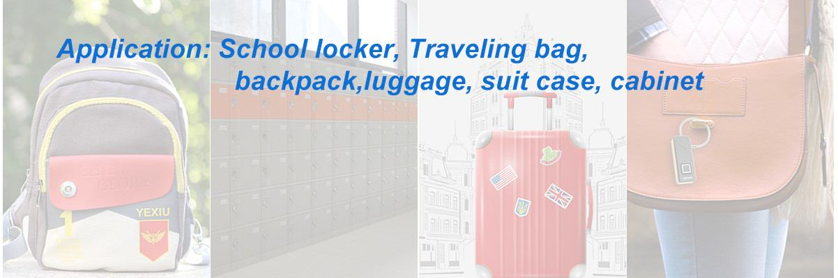 travel backpack lock