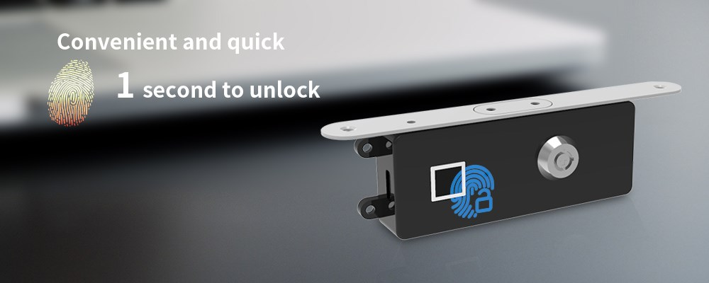 Embedded fingerprint lock