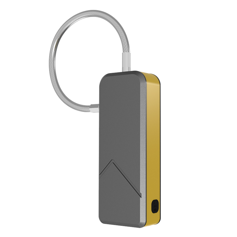 Fingerprint Padlock FL-S1 (Gold)