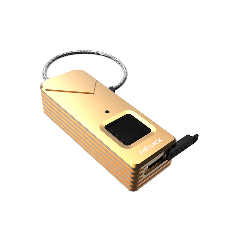 Fingerprint Padlock FL-S2 (Gold)